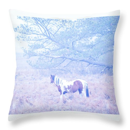 Looking Through The Fog - Throw Pillow