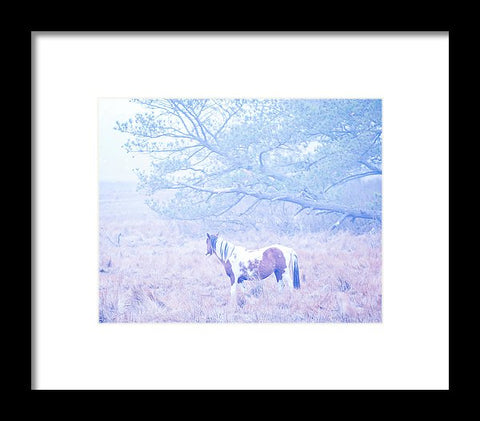 Looking Through The Fog - Framed Print
