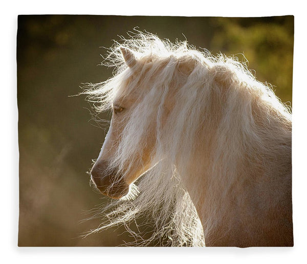 Mane Of Gold - Blanket