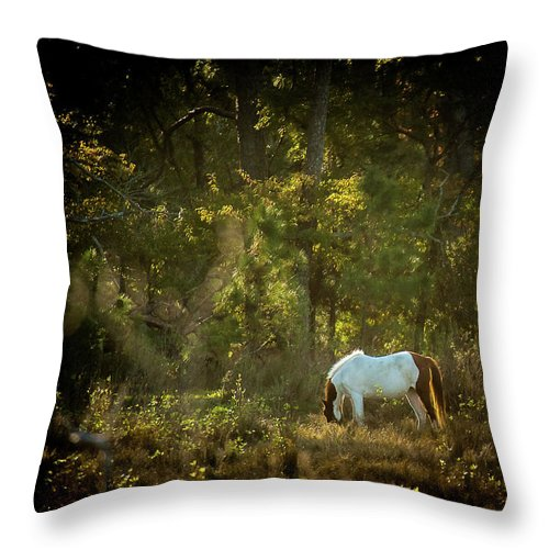 Morning Breakfast For A Wild Pony - Throw Pillow
