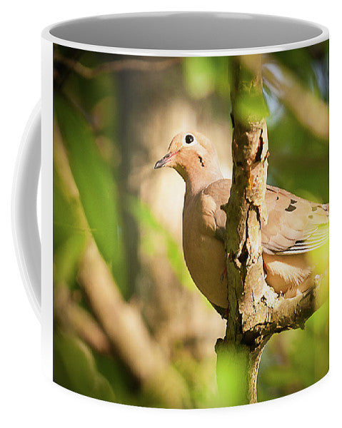 Mourning Dove In The Leaves - Mug