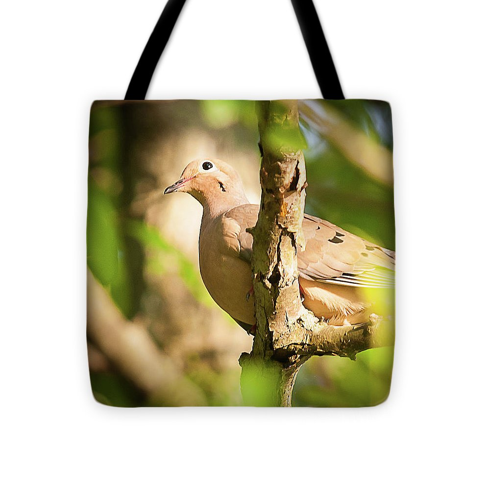 Mourning Dove In The Leaves - Tote Bag