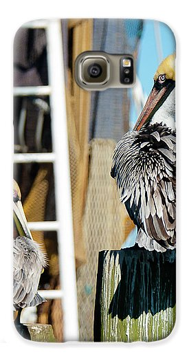 Pelicans On The Dock - Phone Case