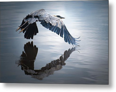 Reflections On Flight - Metal Print