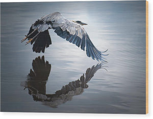 Reflections On Flight - Wood Print