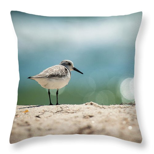 Sanderling On The Beach - Throw Pillow