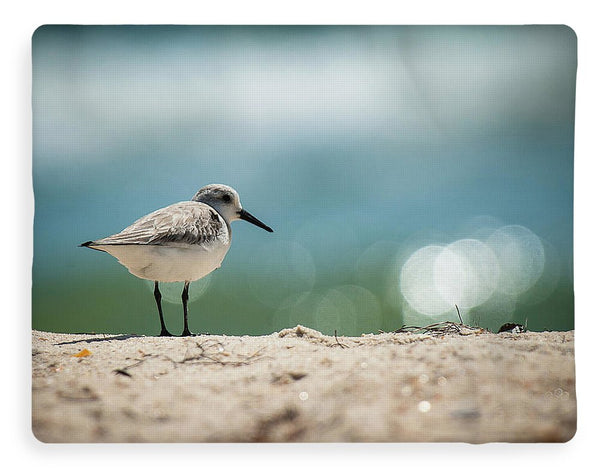 Sanderling On The Beach - Blanket