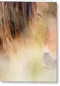 The Soul Of A Wild Horse - Greeting Card
