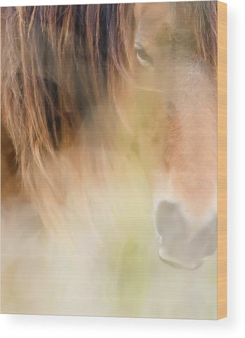 The Soul Of A Wild Horse - Wood Print