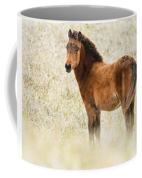 Wild Foal In The Dunes Of Obx - Mug