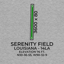 Load image into Gallery viewer, 14la independence la t shirt, Gray