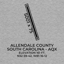 Load image into Gallery viewer, aqx allendale sc t shirt, Gray