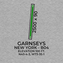 Load image into Gallery viewer, b04 schuylerville ny t shirt, Gray