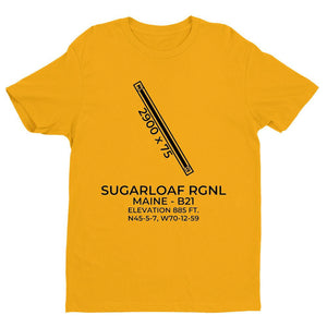 b21 carrabassett me t shirt, Yellow