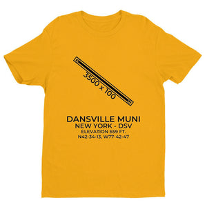 dsv dansville ny t shirt, Yellow