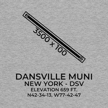 Load image into Gallery viewer, dsv dansville ny t shirt, Gray