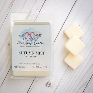 Large Soy Wax Melts - 6 oz  FALL COLLECTION