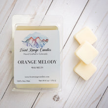 Load image into Gallery viewer, Large Soy Wax Melts - 6 oz  SUMMER COLLECTION