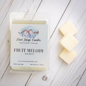 Large Soy Wax Melts - 6 oz  SUMMER COLLECTION