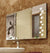 Aspira Designer LED mirrors by Saint-Gobain (SGFG-DAWN)