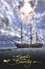 Spirit of the Bounty Postcard - HMAV Bounty with Furled Sails