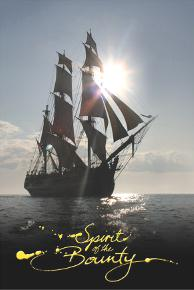 Spirit of the Bounty Postcard - HMAV Bounty Under Full Sail Sun Kissed