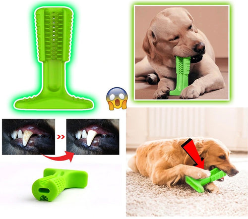 Toothbrush for Dogs