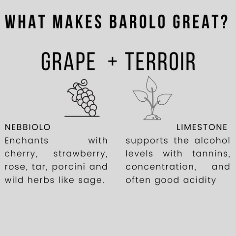 What Makes Barolo So Great - Nebbiolo and Limestone