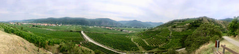 The Wachau