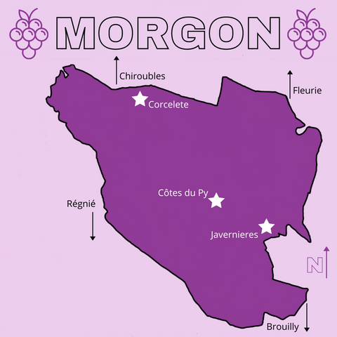 map of morgon cru beaujolais