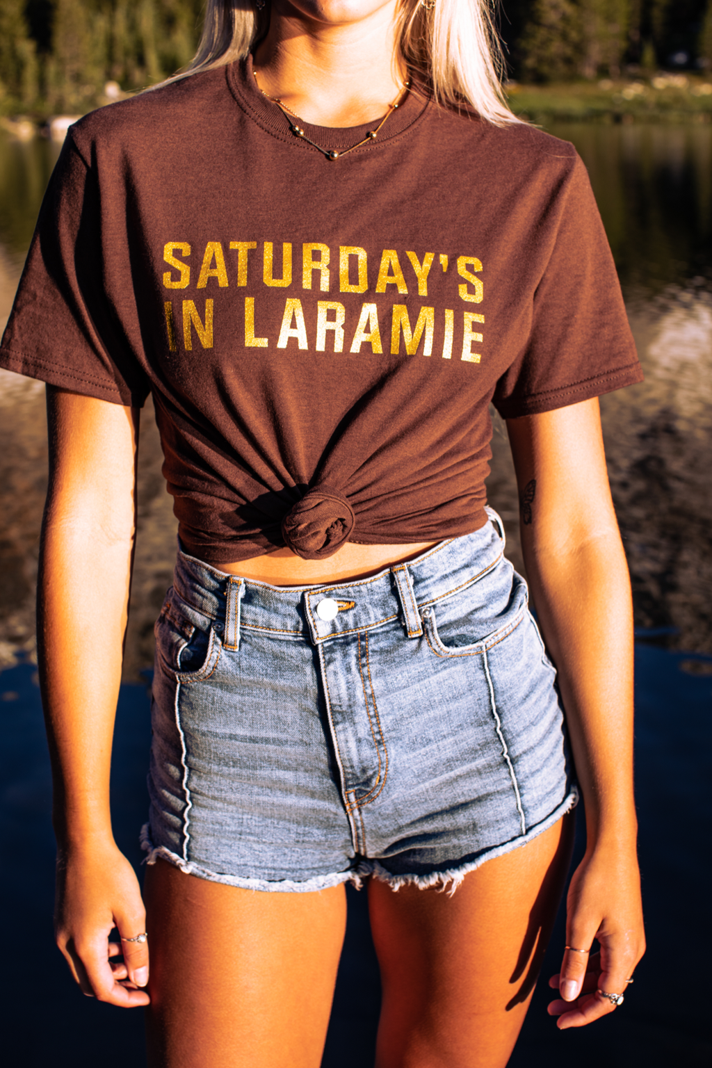 Workin' For The Weekend Wyoming Tee - Brown