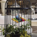 Synaty Bird Wooden Hammock Swing for Parrot - Ooala