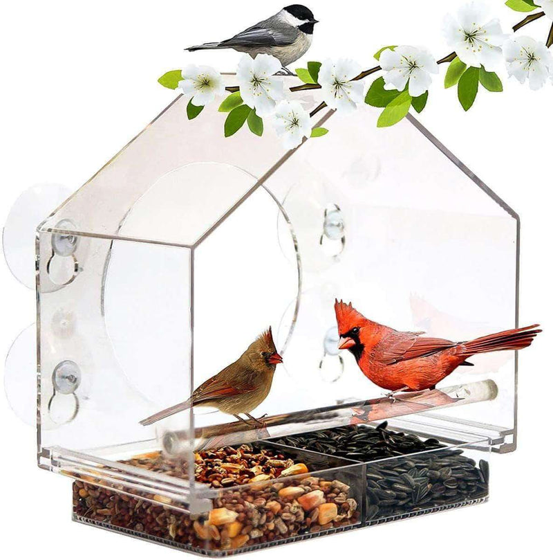 LightWings Acrylic Transparent Bird Feeder Tray | Birdhouse Window with Suction Cup - Ooala