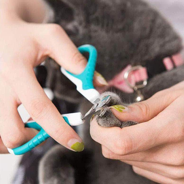 Yozzby Dog & Cat Professional Nail Clippers | Sharp Angled Blade for Pet Nail Trimming - Ooala
