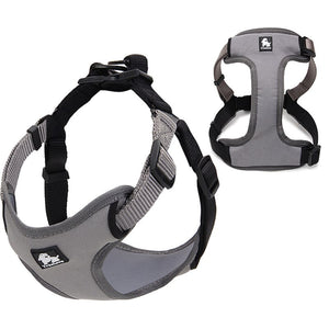 Urban Step In Dog Harness - Dog Nation