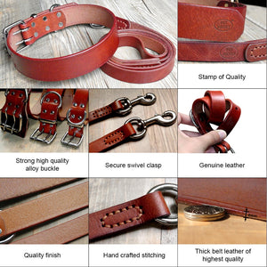 Theo Heavy Duty Genuine Leather Dog Collar Leash Set - Dog Nation