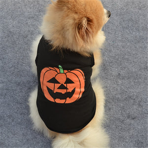 Cool Costume For Smaller Dogs