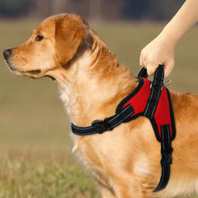 Load image into Gallery viewer, Adjustable Nylon No Pull Dog Harness Vest - Dog Nation