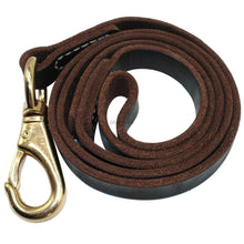 Load image into Gallery viewer, Handmade Leather Dog Leash 4 Sizes - Dog Nation