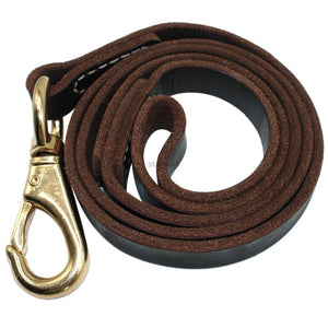 Handmade Leather Dog Leash 4 Sizes - Dog Nation