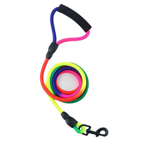 Durable Colourful Nylon Dog Leash - Dog Nation