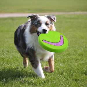 2 in 1 Soft Silicone Frisbee for Dogs Flying Toys for Outdoor Training - Dog Nation