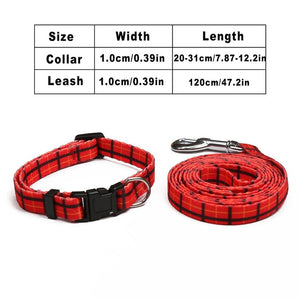 Leash & Collar Set - Dog Nation