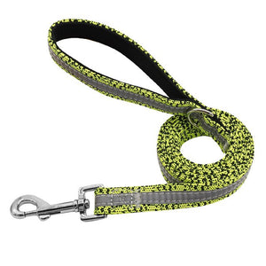 Pluto Reflective Nylon Dog Leash - Dog Nation