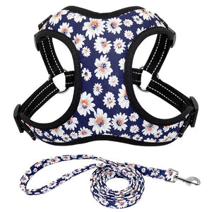 Trendy Nylon Dog Harness & Leash Set for Small to Medium Dogs - Dog Nation