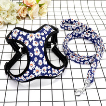 Load image into Gallery viewer, Trendy Nylon Dog Harness & Leash Set for Small to Medium Dogs - Dog Nation