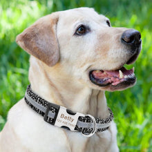 Load image into Gallery viewer, Pluto Personalised Reflective Dog Collar - Dog Nation