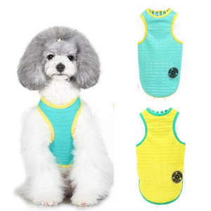 Bright Summer Dog Vest