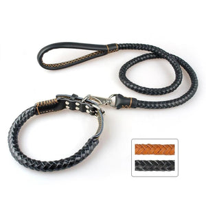 Genuine Leather Dog Collar and Leash Set Braided Leather Adjustable - Dog Nation