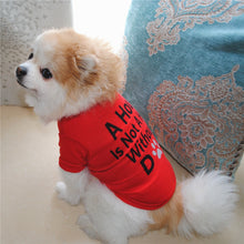 Load image into Gallery viewer, Casual Style Fun T-Shirt for Smaller Dogs - Dog Nation